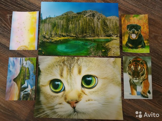 Печать цветных картинок новосибирск