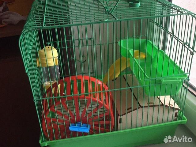 Клетка для попугая и хомяка все в наборах есть. По  89782782376 купить 7