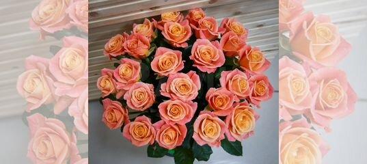 Доставка роз новокузнецкая букет цветов