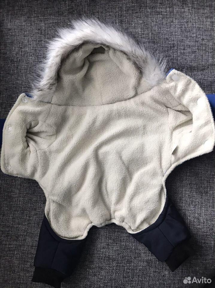 Одежда для собак  89137579987 купить 3