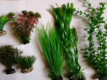 Растения пластик, фильтр внешн.,отсадник,скребок